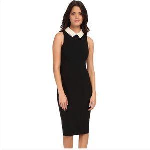 Maggy London Knee Length Black Dress